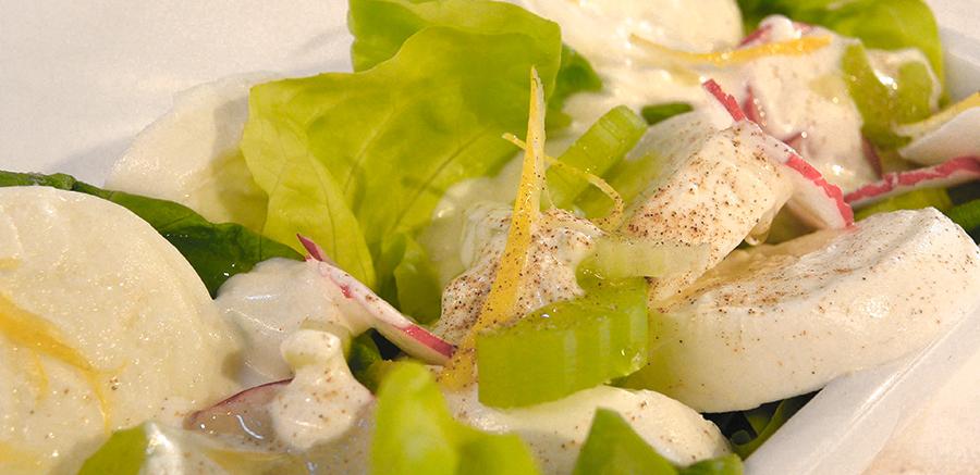 Salade van venkel, bleekselderij en radijs met mozzarella uit Zevenaar